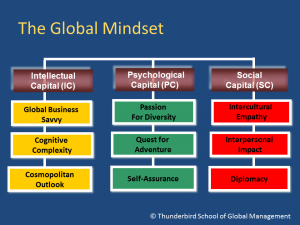 The Global Mindset